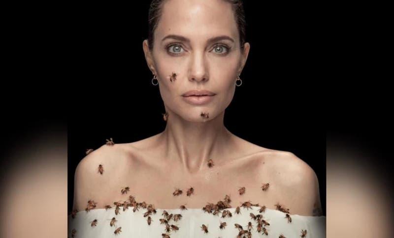 Angelina Jolie provoca escalofríos con imagen donde sale cubierta de abejas