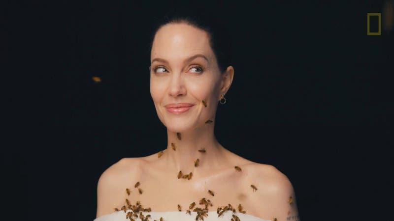 [VIDEO] La impactante imagen de Angelina Jolie cubierta de abejas por 18 minutos