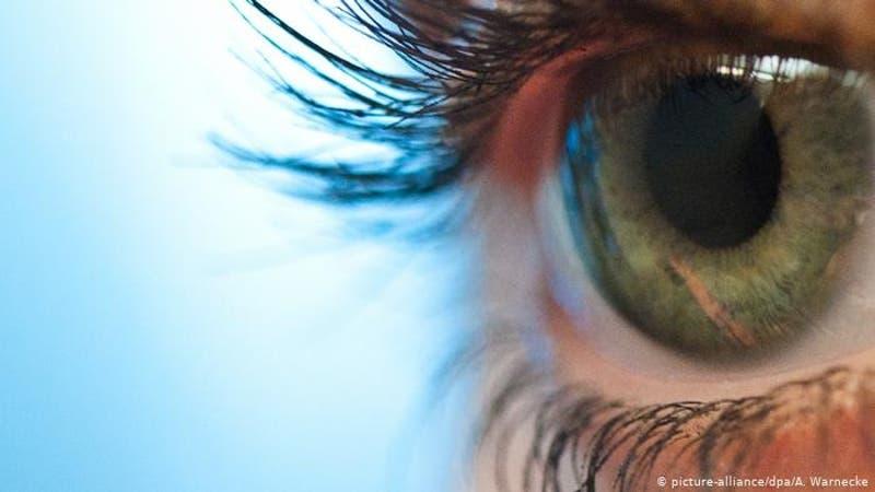 Proteína procedente de alga ayuda a paciente ciego a recobrar parcialmente la visión