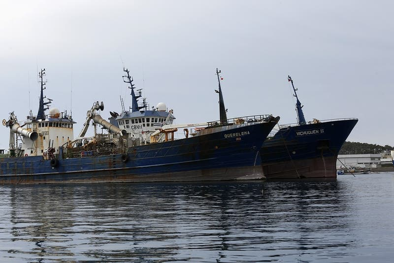 Diputados reingresan proyecto para impedir la pesca de arrastre de la merluza