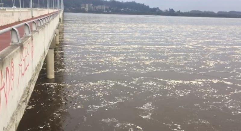 Analizarán muestras de río Biobío tras aparición de espuma en su superficie