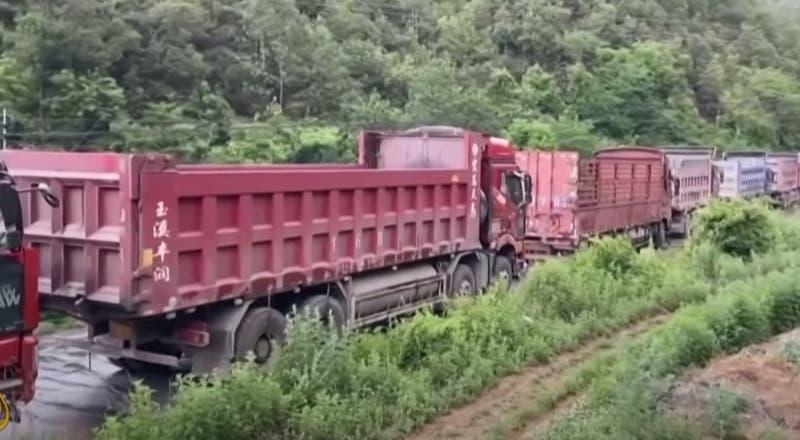 Camioneros intentan bloquear paso de elefantes en China