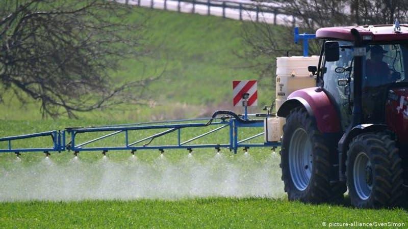 OMS: alimentos contaminados matan 420.000 personas al año