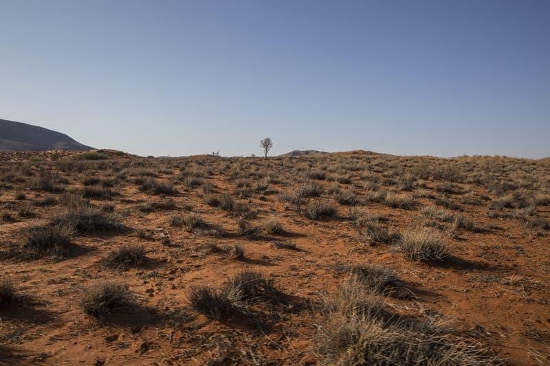 Un tercio de las muertes por calor se deben al cambio climático inducido por el ser humano