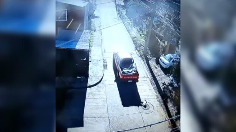 Familia denuncia que camioneta atropelló tres veces seguidas a su perro en Padre Las Casas