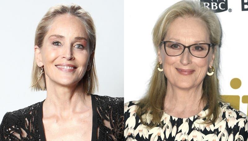 """Sharon Stone criticó el estatus de ícono de Meryl Streep: """"Hay otras actrices con el mismo talento"""""""
