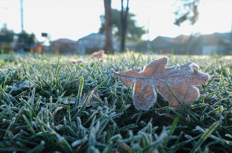 Mañana más fría del año: Termómetros llegaron a los -5,1 grados en la Región Metropolitana