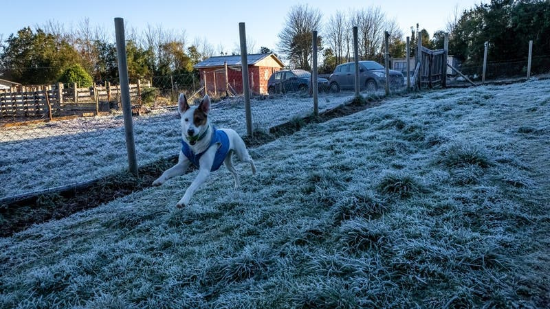 Pronostican heladas para la zona central del país