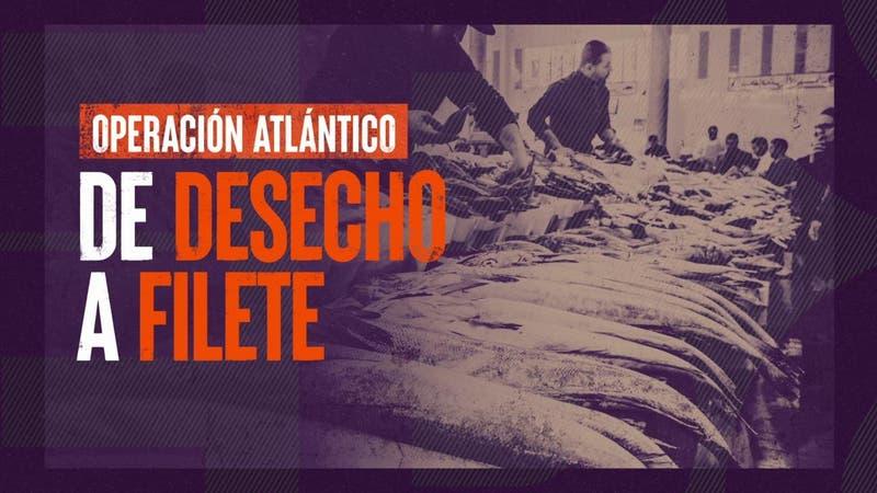 [VIDEO] Reportajes T13: Robo de salmones, de desecho a filete