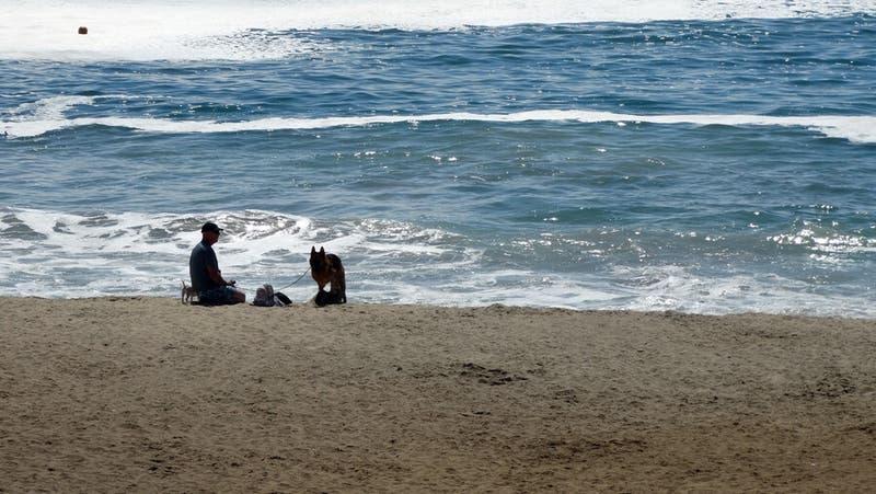 Hombre muere ahogado en Algarrobo tras lanzarse al mar para salvar a su mascota