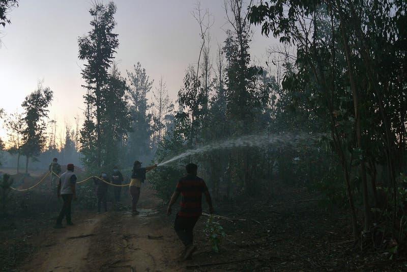Onemi decreta alerta roja por incedio forestal en Rapa Nui