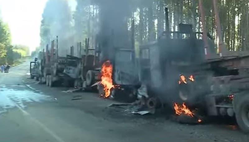 """[VIDEO] CAM reivindicó atentados y declaró """"guerra directa"""" contra forestales"""