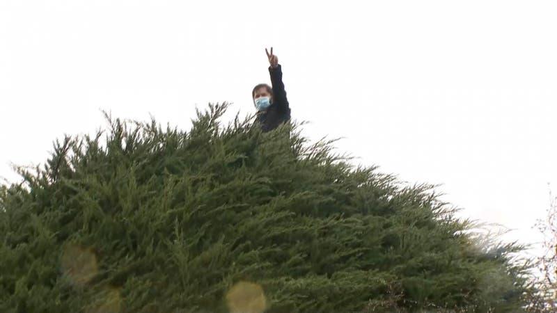 [VIDEO] El momento en que Gabriel Boric trepó árbol que apareció en su franja electoral