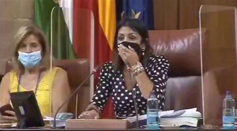 """[VIDEO] """"Enorme"""" ratón interrumpe sesión de parlamento andaluz y obliga suspender una votación"""