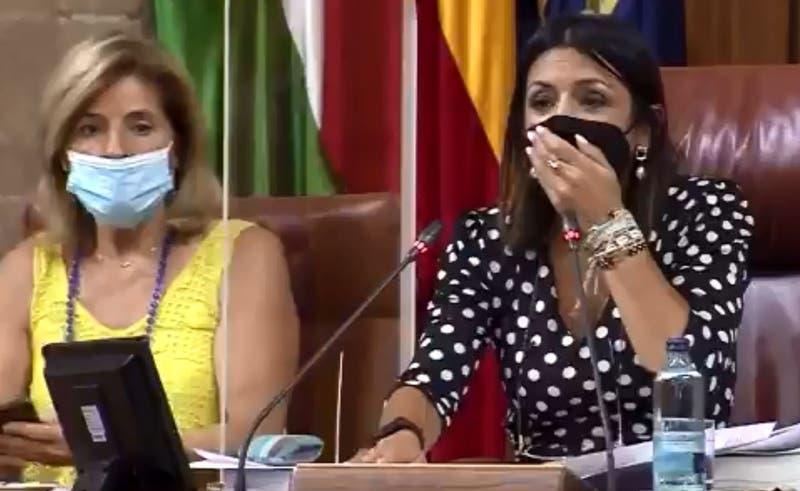 España: Ratón aparece en parlamento y desata el terror entre los legisladores