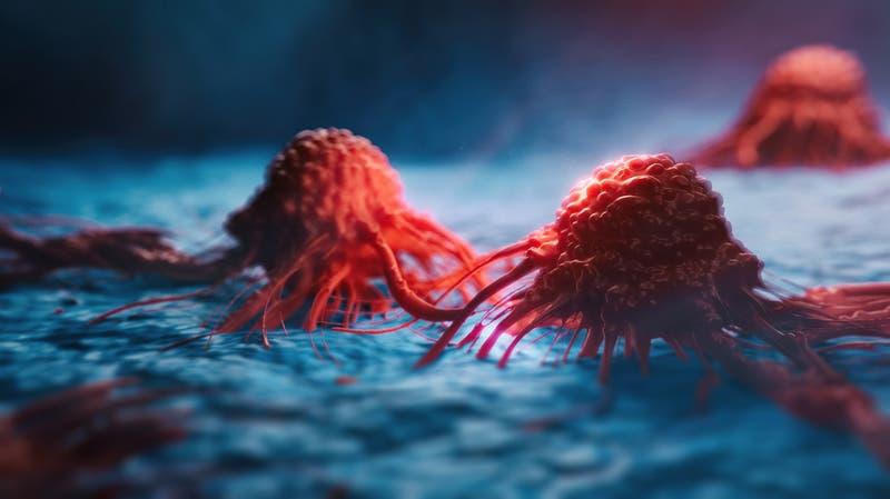 """Científicos descubren """"denominador común"""" de los distintos cánceres"""