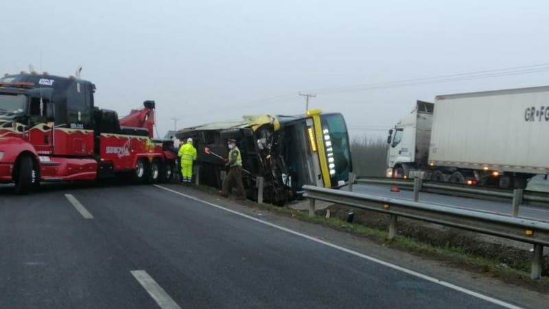 Al menos nueve lesionados por volcamiento de bus en Longaví: Vehículo habría chocado contra caballos