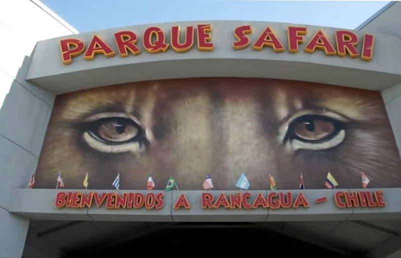 Gobierno decreta suspensión indefinida de funcionamiento para el parque Safari de Rancagua