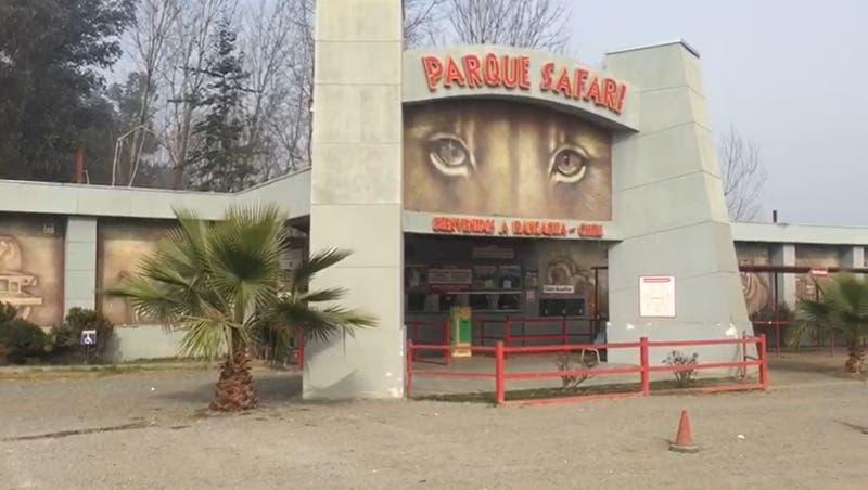 """Gerente de Parque Safari de Rancagua donde murió una trabajadora: """"Abrieron un recinto con candado"""""""