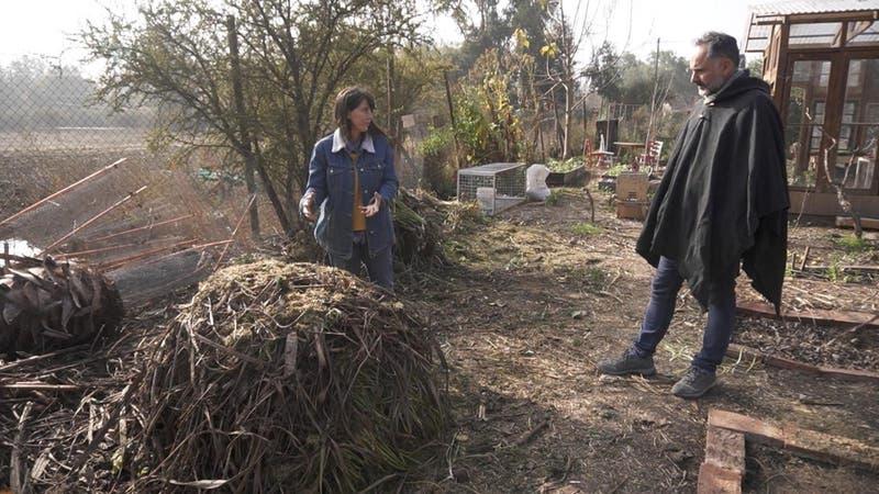 Green News: Aprovechar los residuos para regenerar nuestra tierra