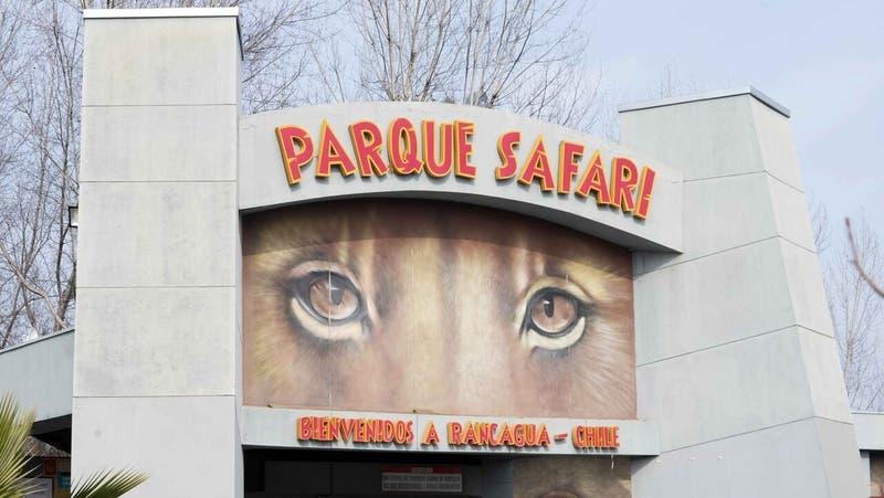 Parque Safari de Rancagua tenía infracciones por no informar accidente laboral en mayo