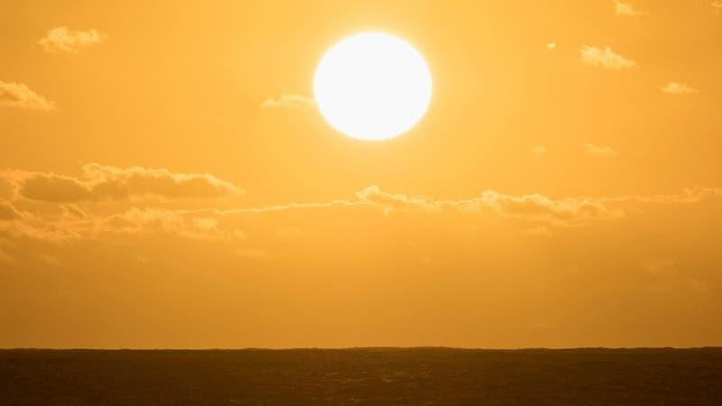 Es oficial: Julio de 2021 fue el mes más caluroso registrado en la Tierra