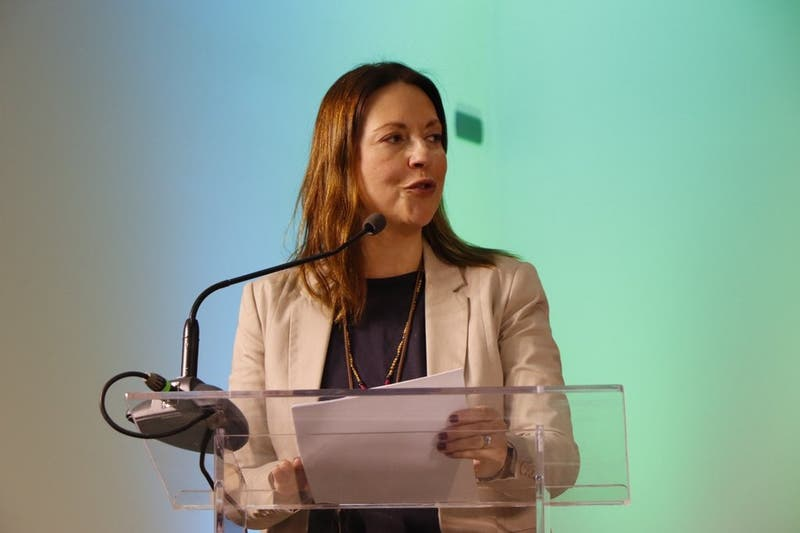 """Natalia Piergentili asume como presidenta del PPD: """"Nuestro principal reto es recobrar la confianza"""""""