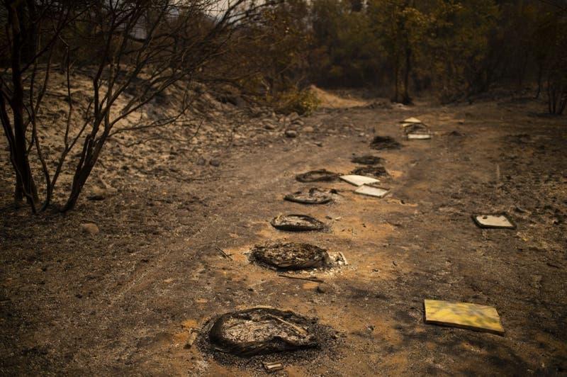 Imágenes satelitales reflejan la voracidad del incendio que azota a Grecia