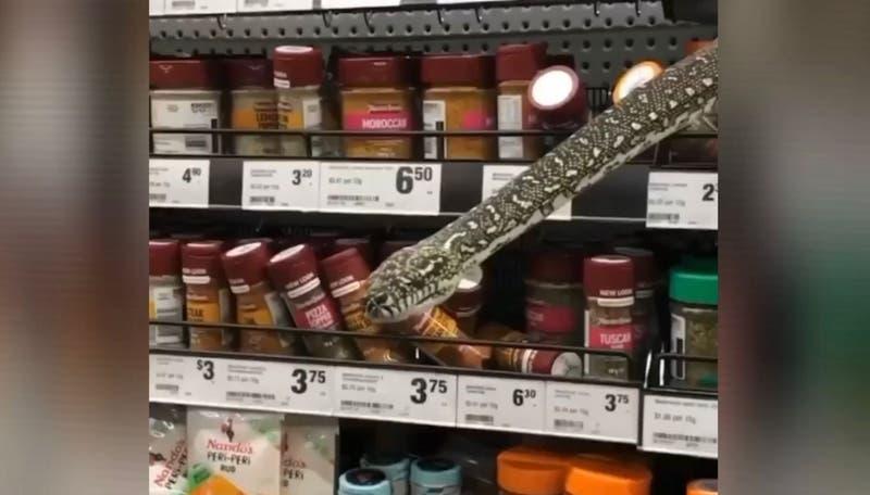 """""""Como una escena de Harry Potter"""": serpiente de tres metros apareció en supermercado de Sídney"""