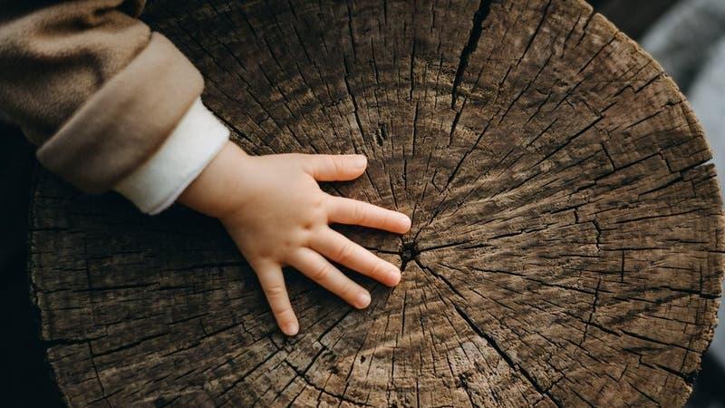 Niña de 22 meses sobrevive cuatro días perdida en un bosque: No tenía agua ni comida