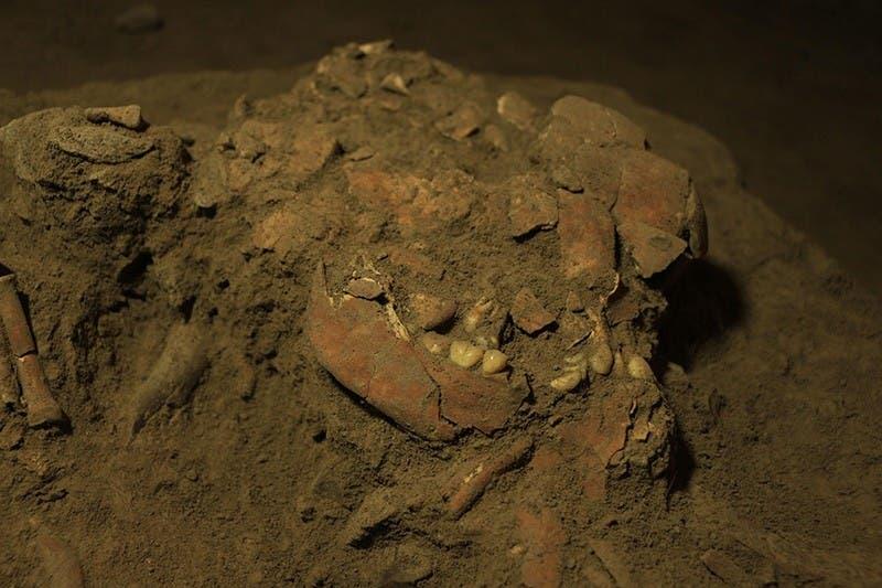 Fósil de joven de 18 años tiene un ADN de una especie humana desconocida