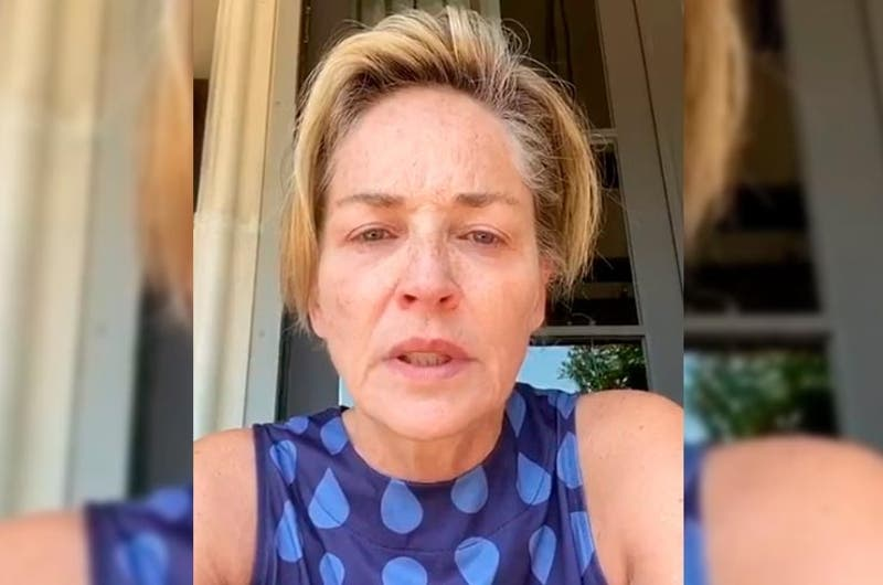 El dolor de Sharon Stone: murió su sobrino de 11 meses tras grave problema de salud