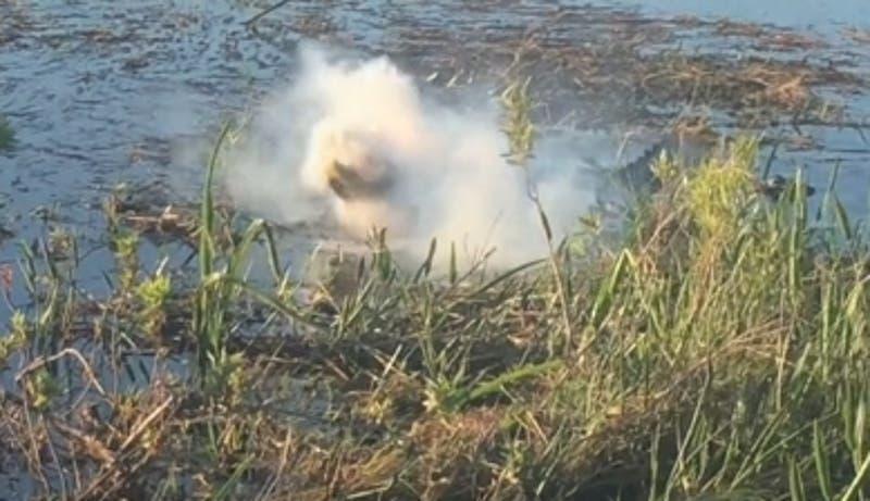 [VIDEO] Cocodrilo se come un dron que intentaba grabarlo y le explota en la boca