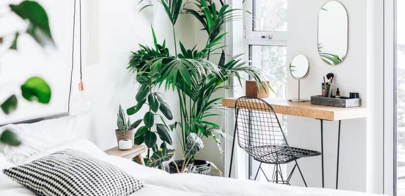 Tips para tener una habitación organizada y con buena iluminación