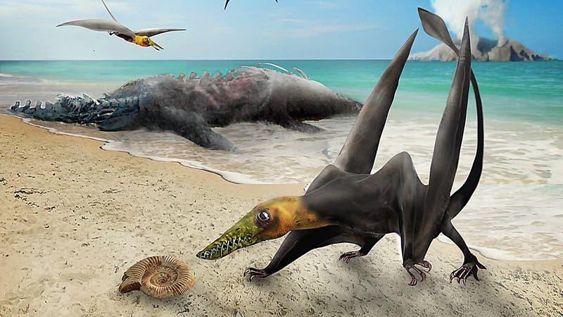 """Identifican enigmático """"dragón volador"""" descubierto en el Desierto de Atacama"""