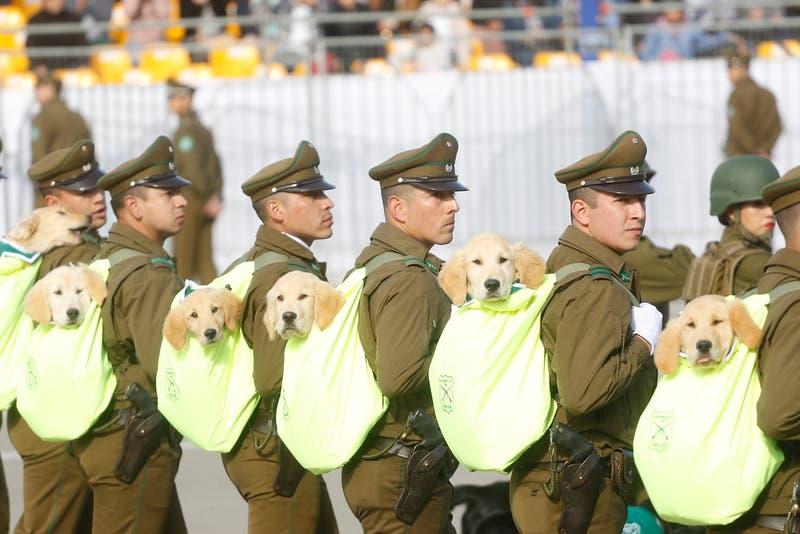 Revisa el horario y dónde ver la Parada Militar 2021
