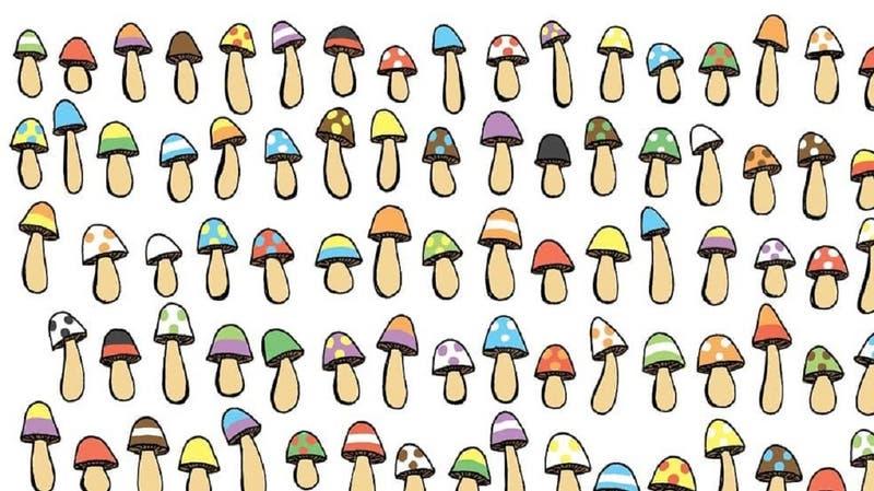 Reto viral: ¿Puedes encontrar el hongo que no se repite?