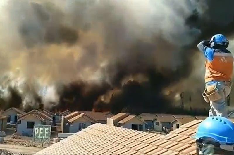 Gigantesco incendio forestal afecta al bosque La Chimba en Ovalle