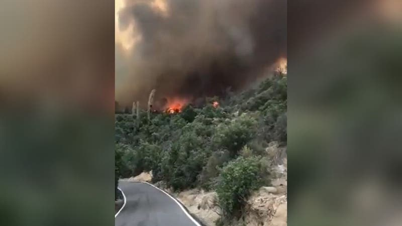 [VIDEO] Las impactantes imágenes del incendio forestal en Tiltil que ha consumido viviendas