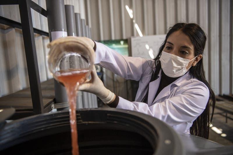 Bacterias devoradoras de metales para limpiar la industria minera.