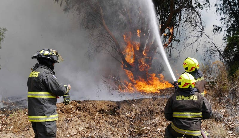 ONEMI declara Alerta Roja en comuna de El Monte por incendio forestal