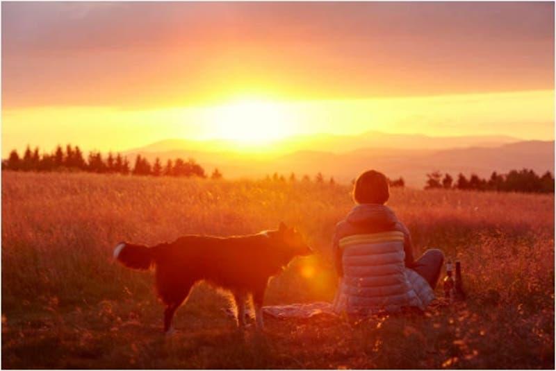 Dog lovers prehistóricos: Perros y amos podrían haber habitado Centroamérica desde hace 12.000 años