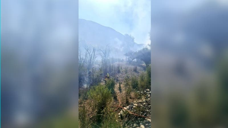 Onemi declara alerta roja en Salamanca por incendio forestal