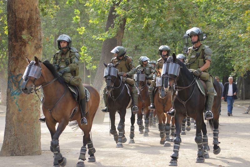 Colegio Veterinario preocupado por uso de caballos por parte de Carabineros en manifestaciones