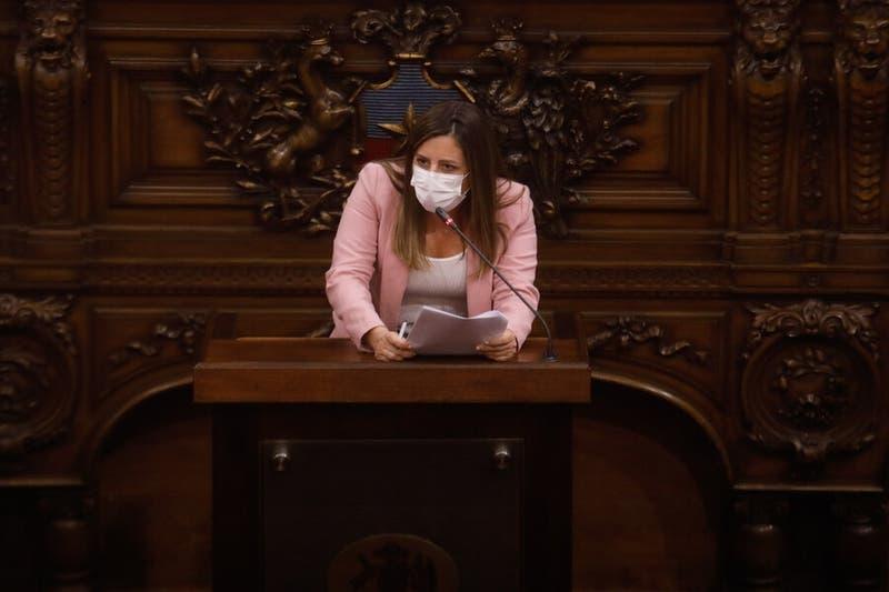 Constituyente Marinovic insiste en eventuales cambios a la bandera y al himno en criticado discurso
